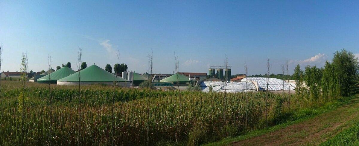 Biogaz rolniczy